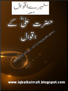 Sunhery Aqwal (Beautiful Quotes) Urdu Pdf  Download