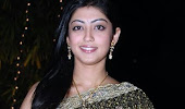 Pranitha saree photo collection