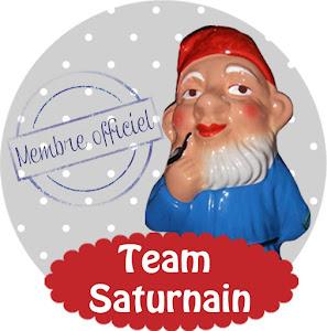 Team Saturnain