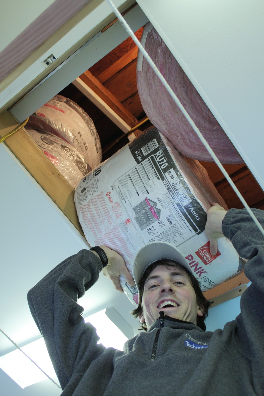 payless insulation