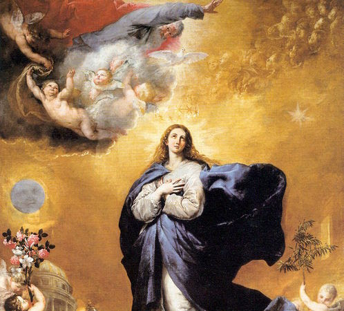 Quick Thoughts on the Immaculate Conception