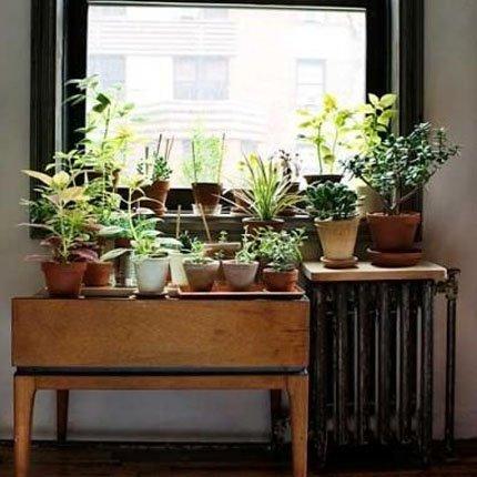 Soluções práticas e estilosas de jardim