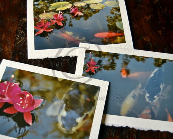 https://www.etsy.com/listing/204632369/fish-and-fuchsia-photo-cards-6-blank
