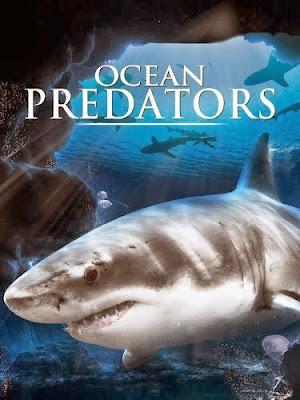 Depredadores del Oceano – DVDRIP LATINO