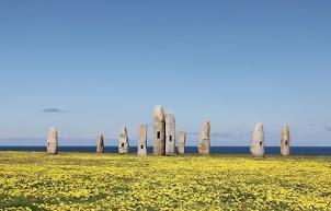Auvergne : Une trentaine de monolithes découverts dans le Puy-de-Dôme