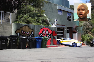 Chris Brown Gives Up Graffiti Fight
