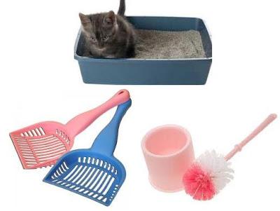perlengkapan memelihara kucing