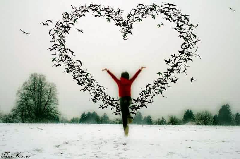 صور حب جديدة 2014 , اجمل صور حب جميلة Photos new love