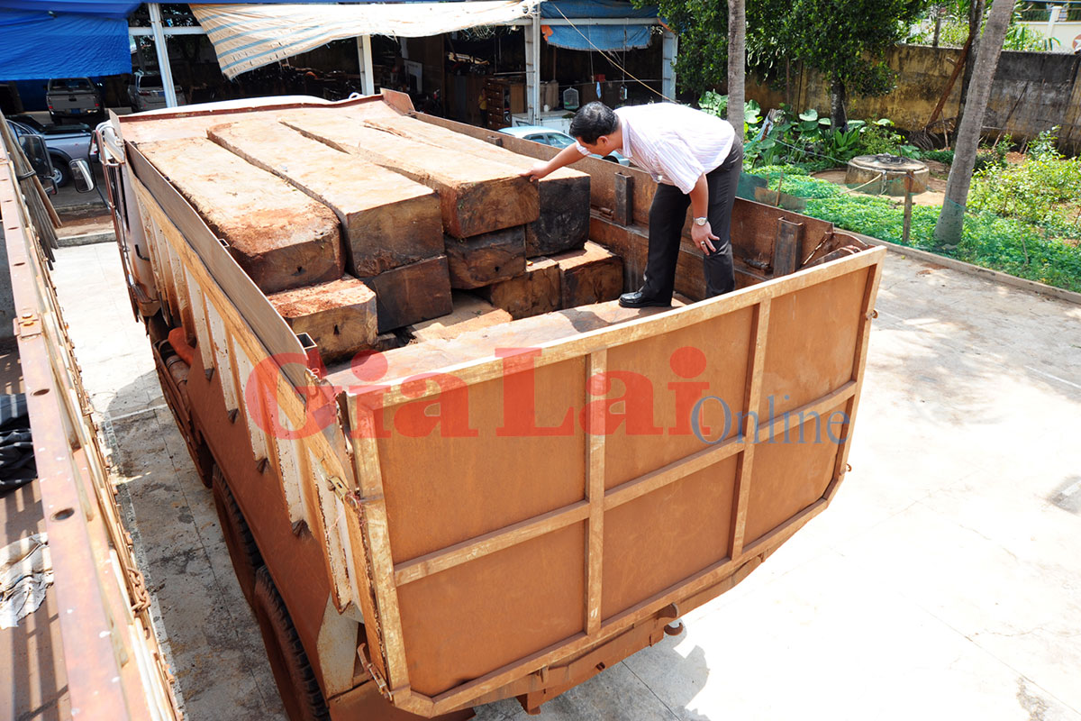 Gia Lai: Phát hiện bắt giữ xe ô tô ben chở gỗ lậu