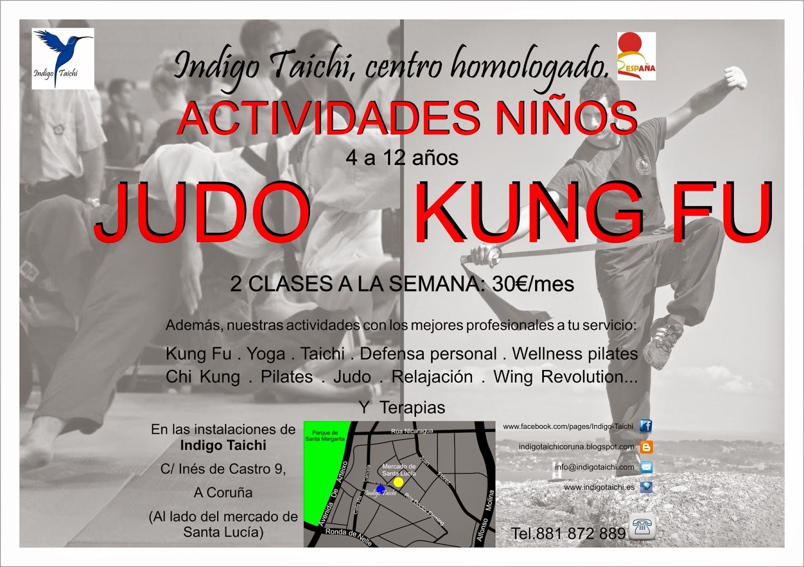 Judo/kung fu