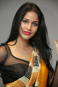 Lavanya Tripathi glam pics in saree-thumbnail-12