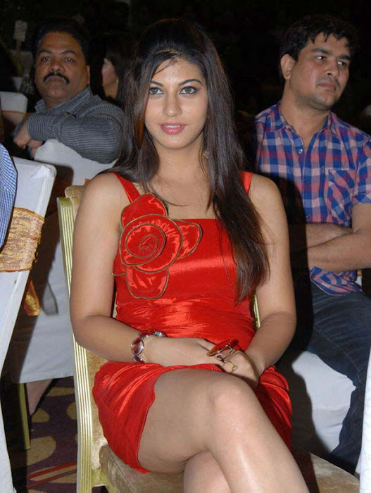 saara josh at disco audio launch glamour  images