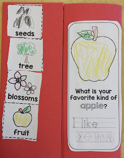 https://www.teacherspayteachers.com/Product/My-Kindergarten-Apple-Notebook-2101589