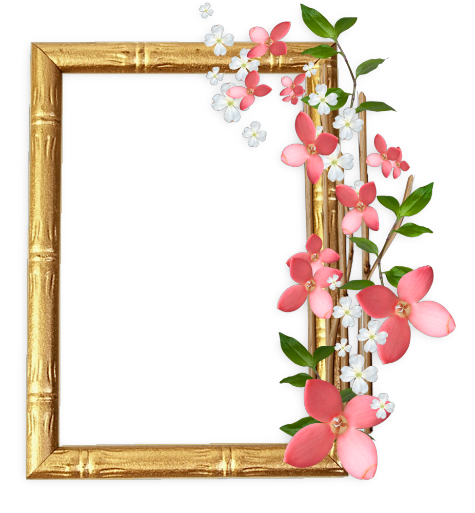 Marcospng fotos karenliz marcos png flores - Marco de fotos ...