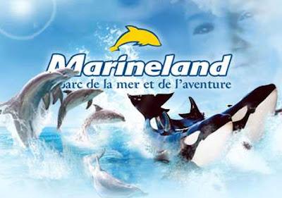 -50% sur les places pour le parc Marineland