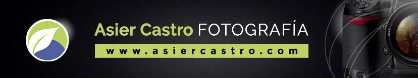 Asier Castro Blog