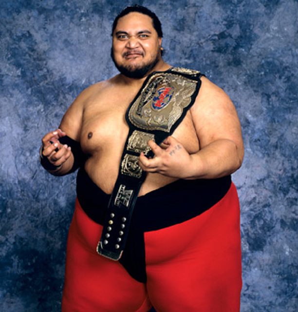 Yokozuna Hd Free Wallpapers