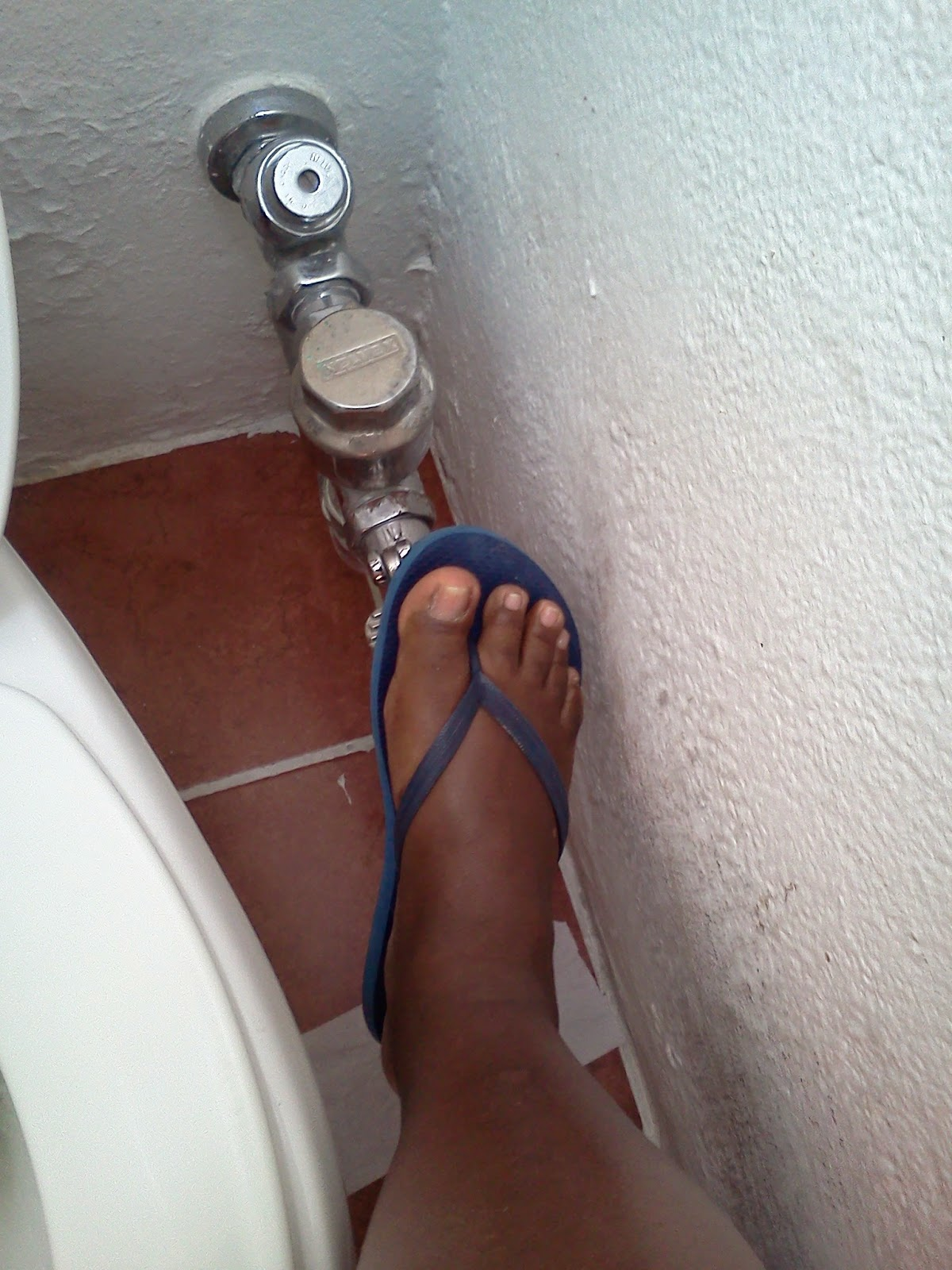 Push the pedal to flush the toilet with your feet.