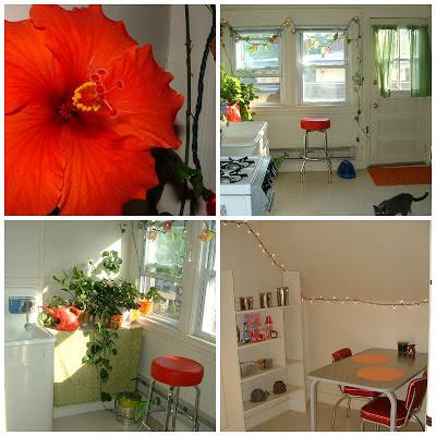 living in noho, apartment love in northampton massachusetts, noho mass memories