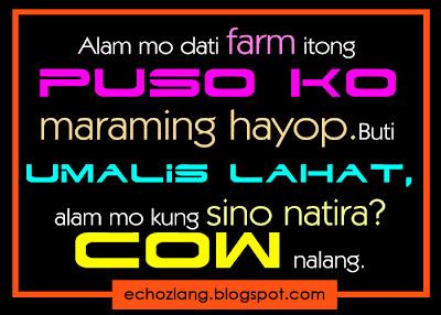 Alam mo dati farm itong puso ko, maraming hayop.
