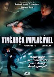 Baixe imagem de Vingança Implacável [2008] (Dublado) sem Torrent