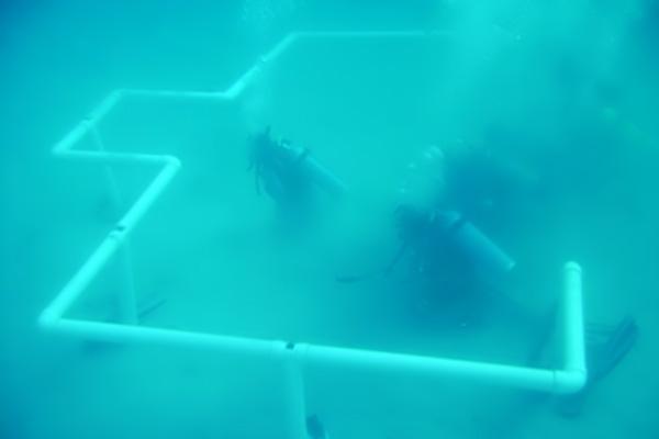 بناء أول مسجد تحت البحر في العالم بالسعودية