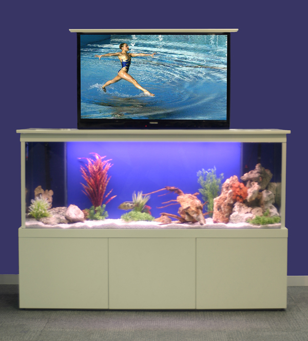 No Room For An Aquarium? Think Again. 20 Unusual Places In Your Home For Fish Tanks. - if it's ...