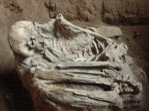 Fosil di Goa Pawon
