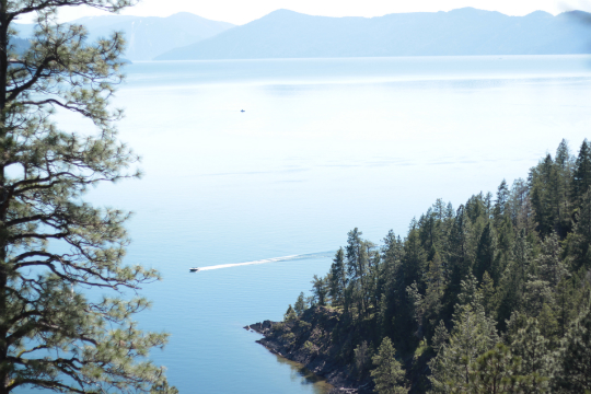 green monarchs and lake pend oreille