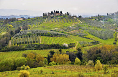 Paisaje de Tuscana, Italia. - Tuscany Italy. Landscapes