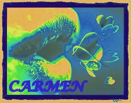 http://carmenandujarzorrilla.blogspot.com.ar/2014/03/contando-las-semanas-en-52-plabras.html
