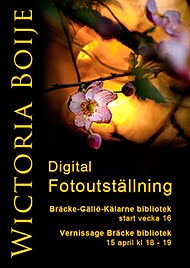 Digitala Fotoutstllningar April 2013