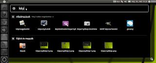 Ubuntu Linux 11.04 Unity