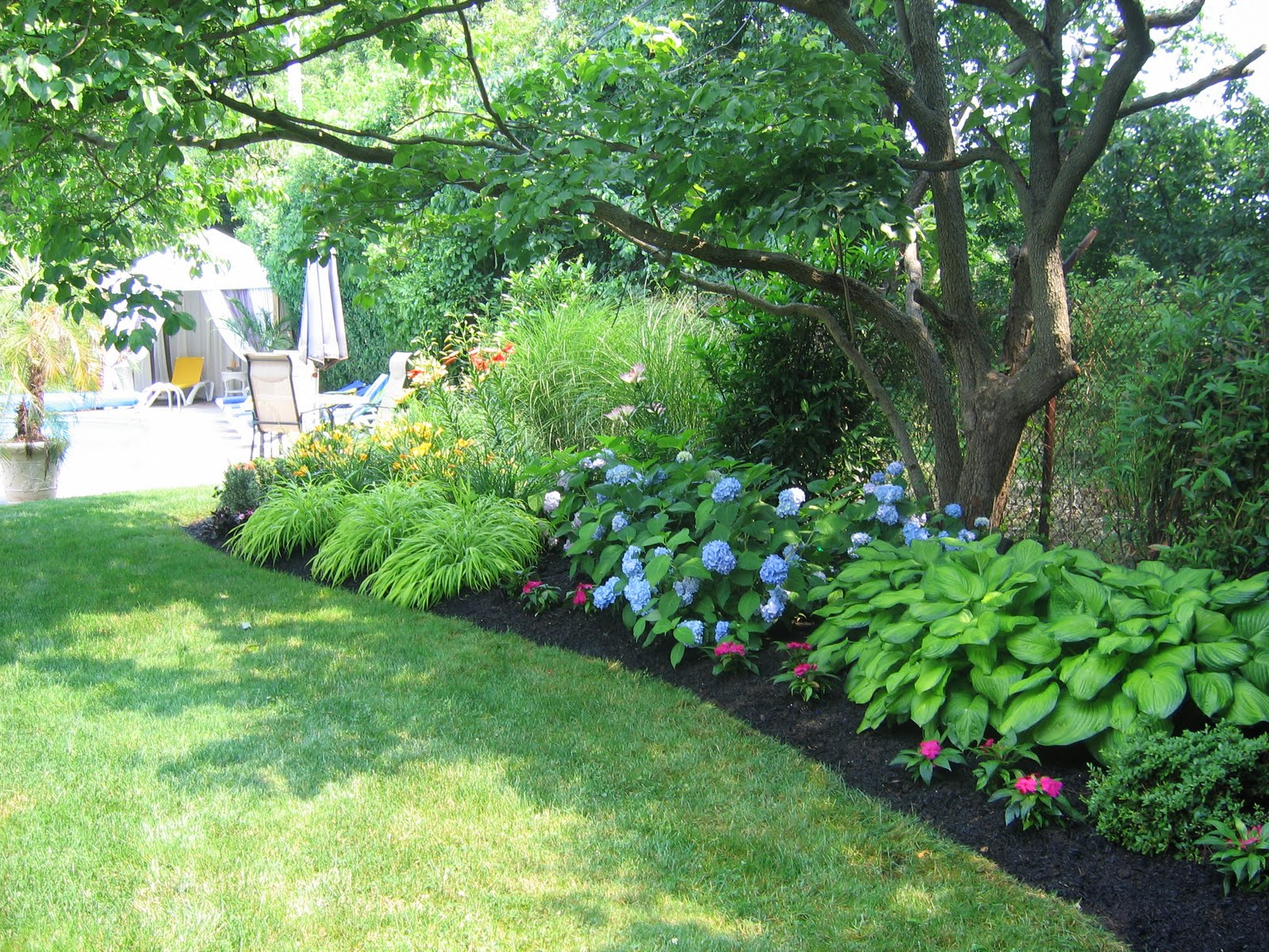 Lm garden design for Backyard planting designs