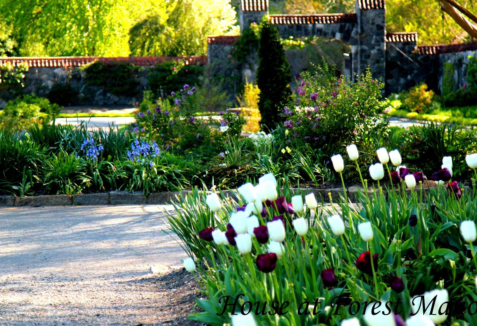 Biltmore Gardens 2016