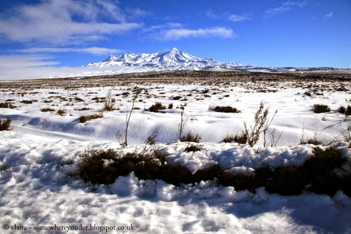 view of Mt Ruapehu in Winter from the Desert Road - central North Island, New Zealand