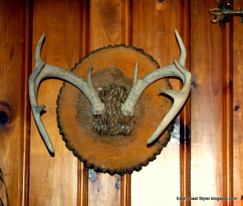 Wood Log Mounted Deer Antlers idea