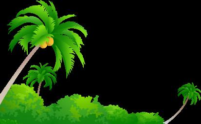Gambar Pohon Dan Buah Kelapa