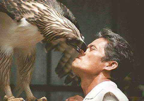 águila monera con entrenador