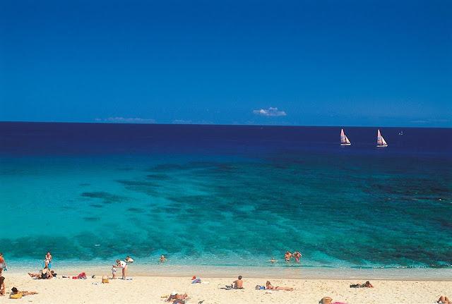 Isola di r union natura e bellezza di un 39 isola insolita - Foto di animali dell oceano ...