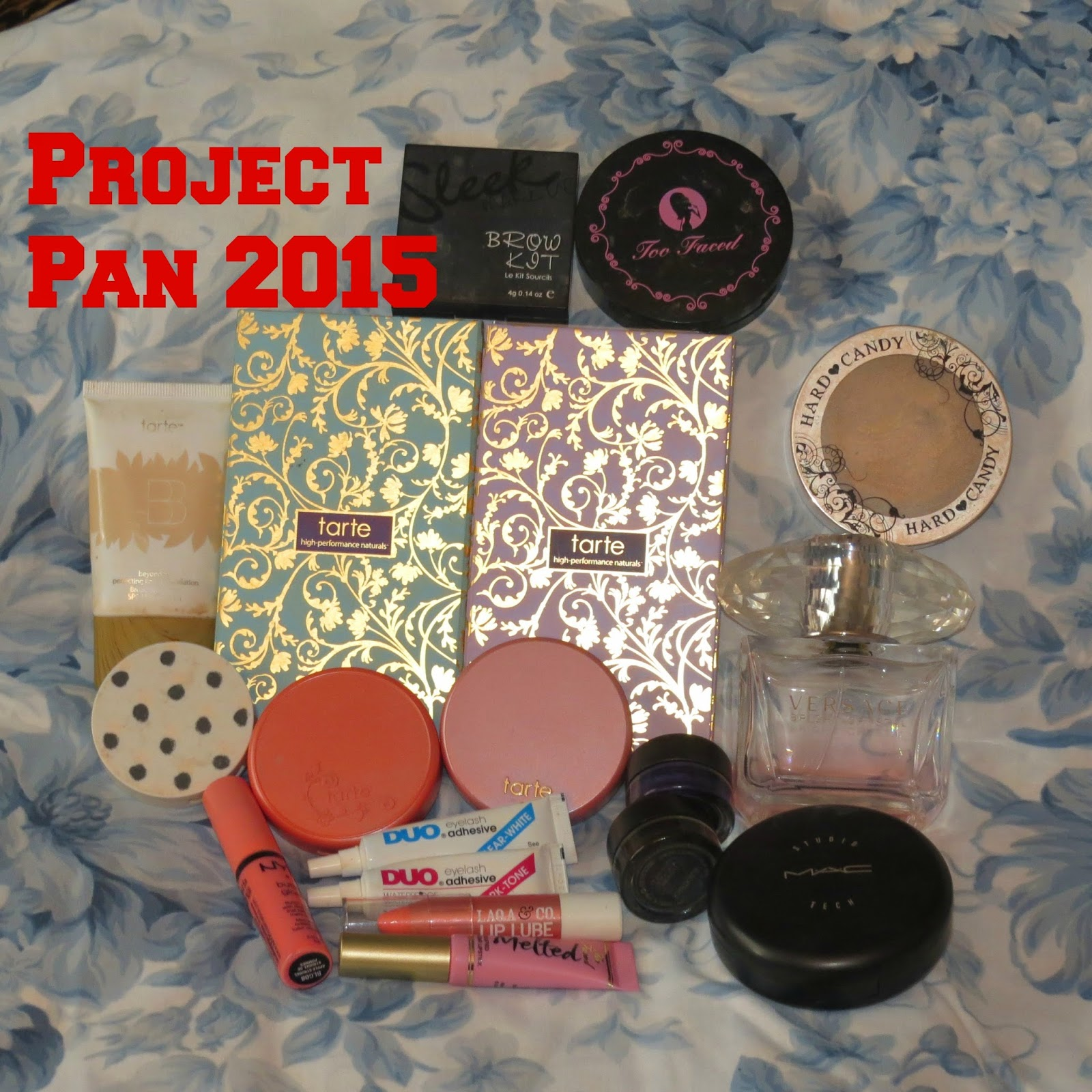 project pan, spending ban, project pan tarte, project pan 2015, project pan with spending ban, spending ban 2015, college project pan, college spending ban, a beauty and the business,