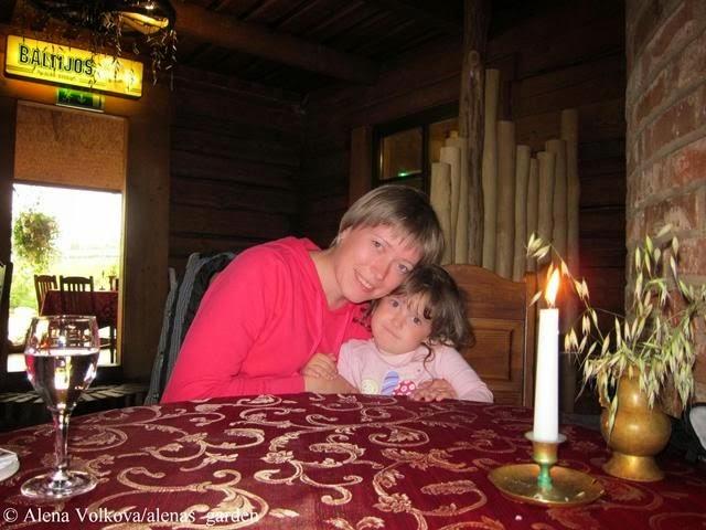 перегородка из бревен, корчма в Литве, деревенский стиль, герань в кашпо, растения в подвесных кашпо, деревянный дом