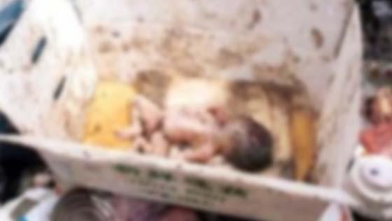 Detik cemas temui bayi dibuang yang disangka anak kucing