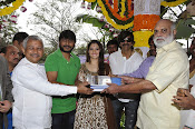 Bengal Tiger Movie launch event photos-thumbnail-15