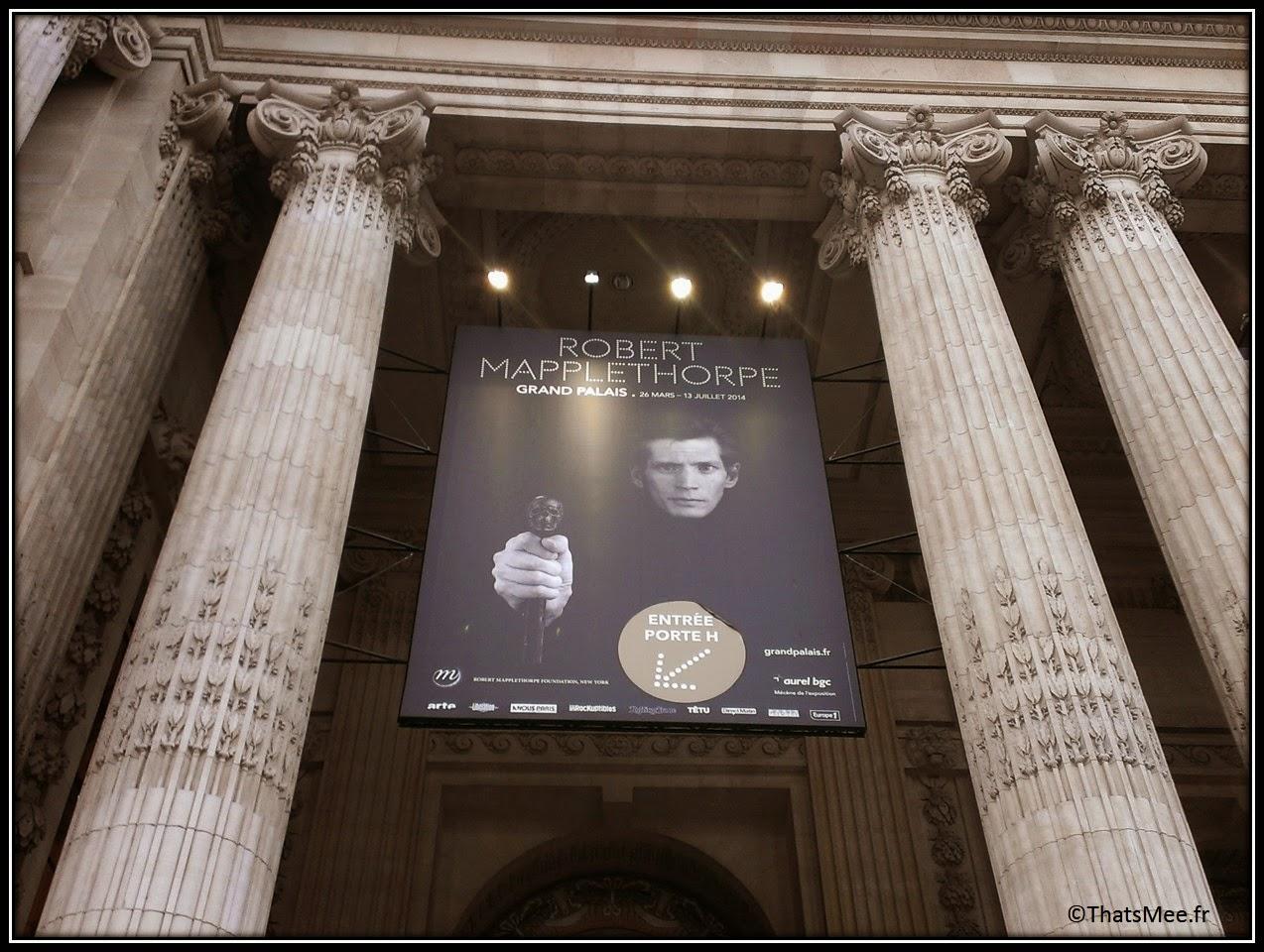 expo Mapplethorpe, Grand Palais entrée H