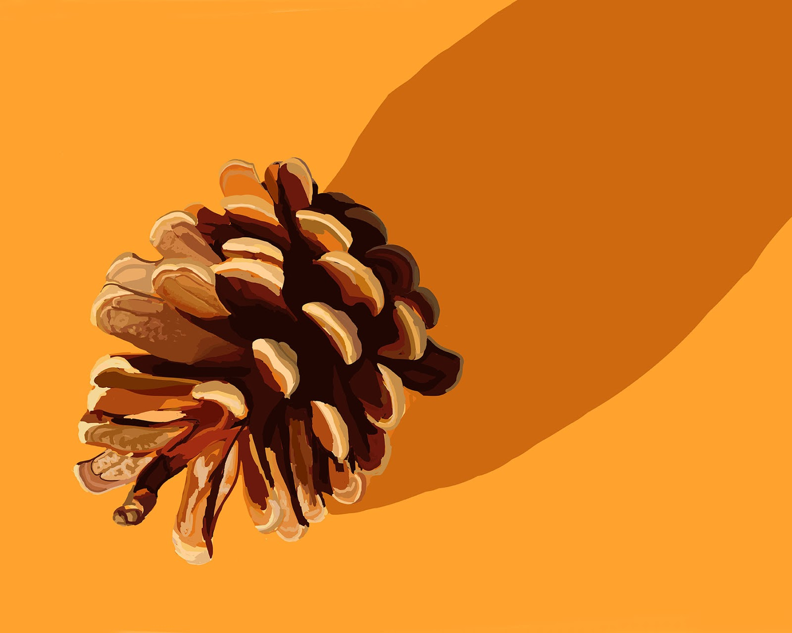 ipad drawing of a pine cone, drawn with adobe ideas