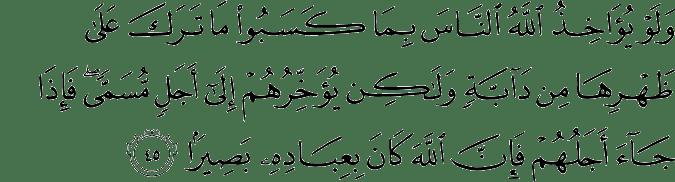 Surat Al-Fathir Ayat 45
