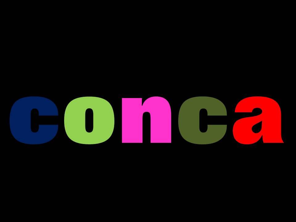 blog de conca provisional