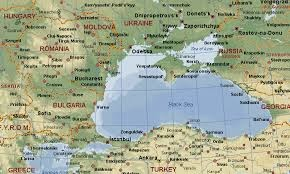 Caspian sea birds aves del Mar Caspio