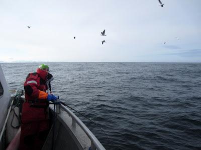 IMG_1284-kim+fisker.jpg